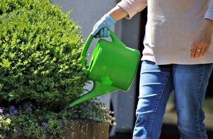 Patenschaften für öffentliche Grünflächen und Beete vor der Haustüre übernehmen
